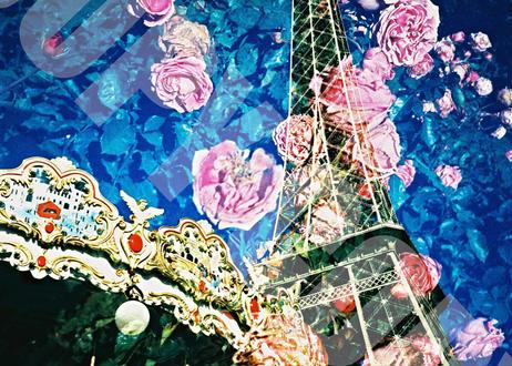 オリジナル卓上写真「Perfume」