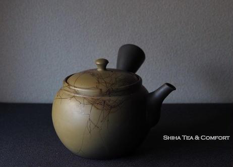 白山緑泥藻掛大茶壺急須 HAKUSAN Mogake Large Teapot Kyusu