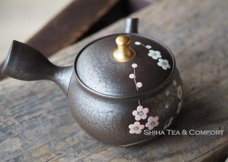 昭龍油滴梅花茶壺急須Shoryu, Plum Flower Oil Drops Teapot KYUSU