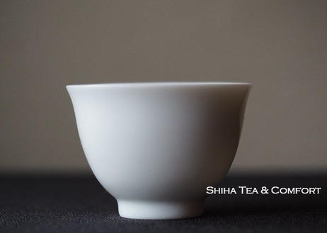 【Free Shipping】常滑焼品茶小急須品茶杯 Tokoname Small Tasting Kyusu Teapot 3pcs with Tasting Cups