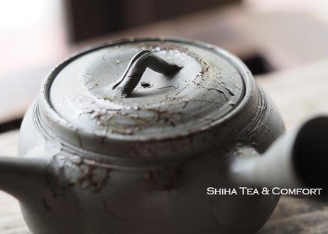 白山緑泥藻掛青緑茶壺急須 HAKUSAN Mogake Blue Green Teapot KYUSU