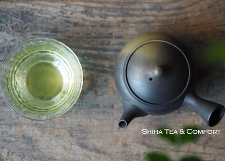 Hakusan Green Smoke Black Gradation Kyusu Teapot 白山緑黒