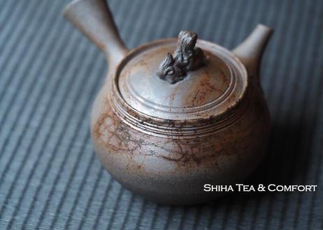 Gradian Dog Seaweed Teapot JIN Tokoname