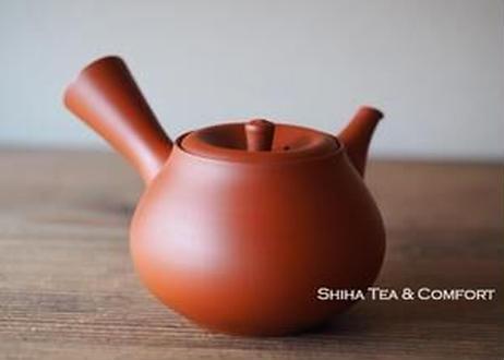 Reiko Red Clay Teapot Silky Texture (SHIHA ORIGINAL) 玲光梨朱泥