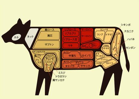 【梶岡牛】ウデ焼肉  400gパック