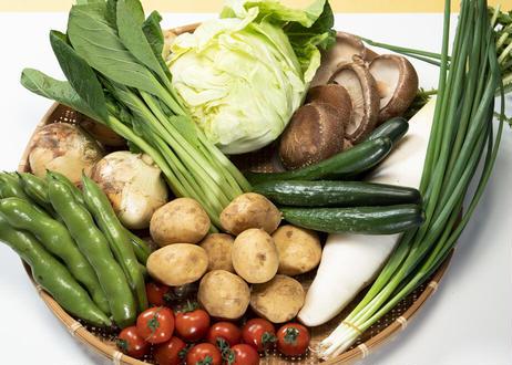 旬の野菜詰め合わせ(大)