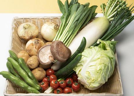旬の野菜詰め合わせ(小)