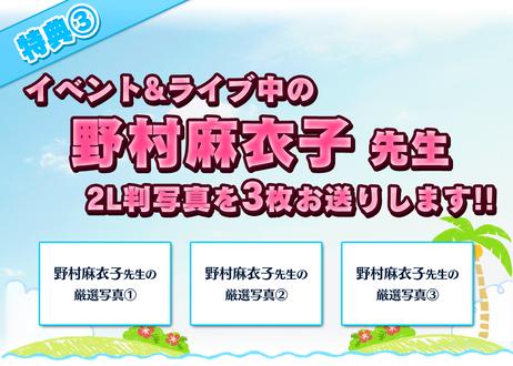 【野村麻衣子先生】専用推しカメラ チケット『第1部 14:00〜』
