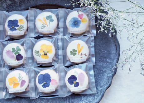 お花のアイシングクッキー 大10個