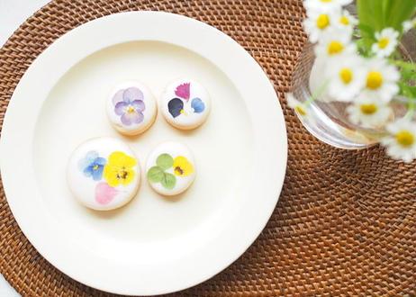 お花のアイシングクッキーギフト