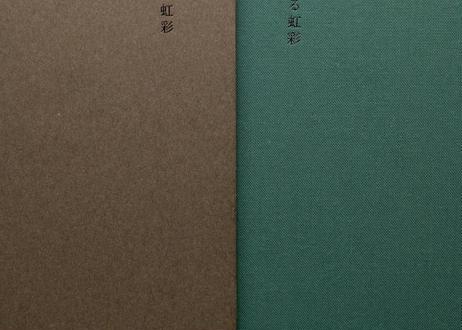 小説+写真集│震える虹彩│水原涼+安田和弘
