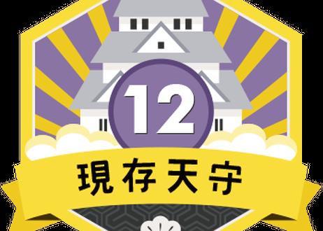 缶バッジ【現存天守12城】