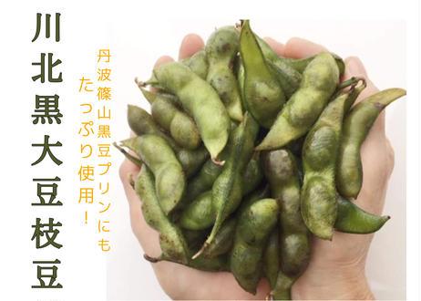 川北黒大豆 枝豆