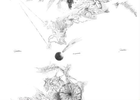 【物販】山崎阿弥album『quantum quantum』