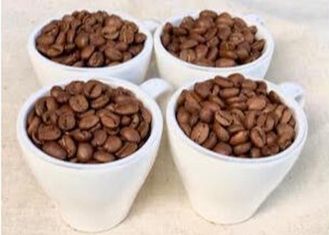 【送料無料】シングル4種おためしセット 豆のまま30g×4袋