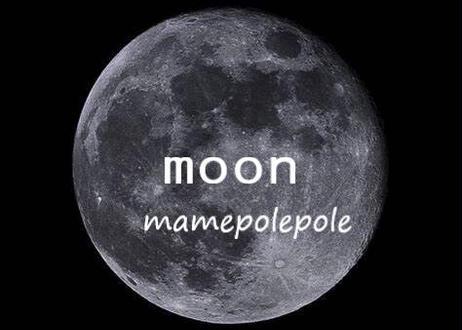 【インフュージョンブレンド】 moon 100g