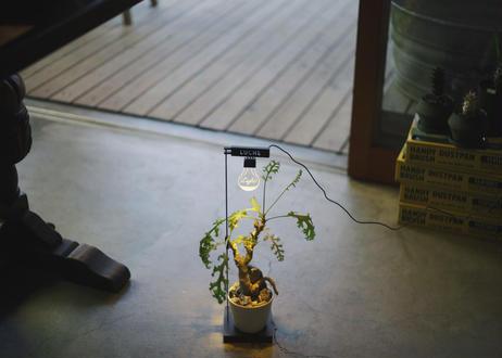 もう日照不足には悩まない!植物専用育成ライト