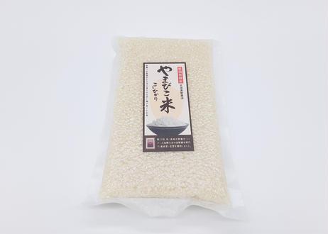 【阿賀野市のお米満喫セット】AGANO瓦器ご飯茶碗 × やまびこ米こしひかり