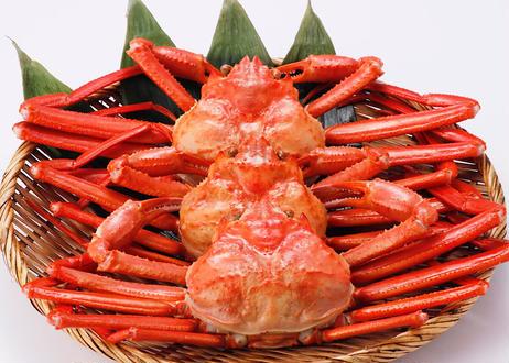 茹で紅ズワイガニ(約350g)×3枚セット【着日指定不可】