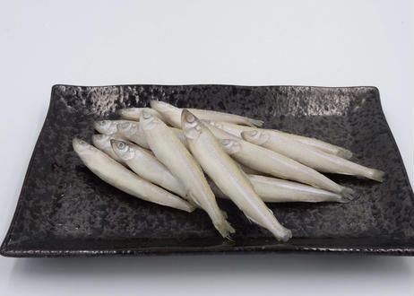 琵琶湖産 ワカサギIQF(バラ凍結)
