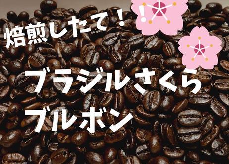 ブラジルさくらブルボン 200g 自家焙煎コーヒー豆!!