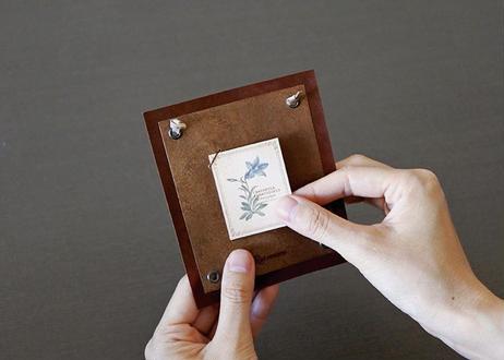 高山植物の小さな図鑑風インテリア
