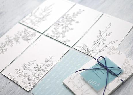 山野草のメッセージカード*003