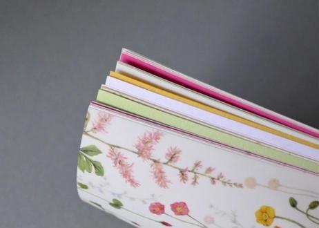 明るい花たちの色いろ彩ノート