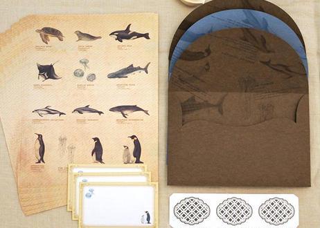 海の生き物の図鑑風レターセット