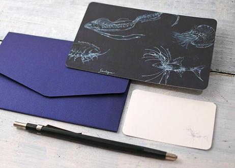 深海生物のメッセージカードセット ver.1(封筒付き)