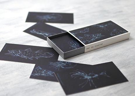 深海生物のスリムカードBOX