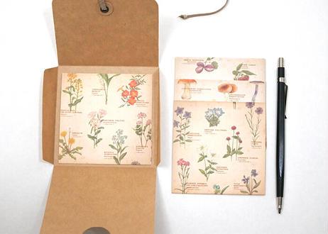 図鑑風メモ便箋セット*A〔野の花・木の実・きのこ〕
