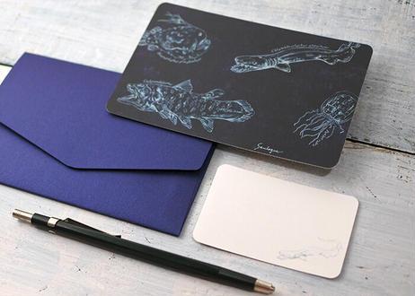 深海生物のメッセージカードセット ver.2(封筒付き)