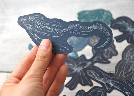 深海生物のいろいろメッセージカード(ケース付き)