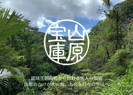 山原宝庫 沖縄うこん