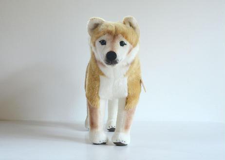 ケーセン 柴犬(大)