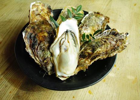 食べるBOX 12カ月隔月お届け 海の幸贅沢コース