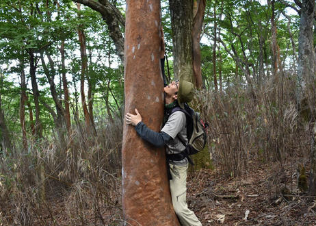オンラインでやま学校しよう! 稀少植物の森めぐり 生配信
