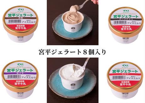 宮平ジェラート8個入(ミルク×2、ダークチョコ×2、紅芋×2、黒糖×2)