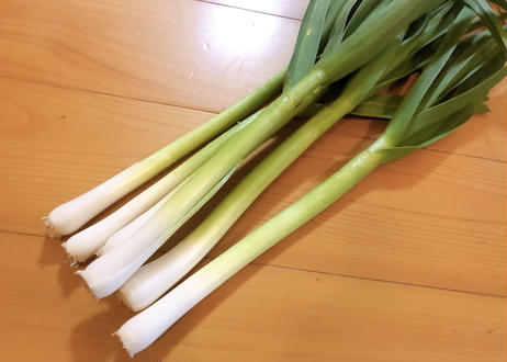 【春の恵みの味わい!!】自然栽培べっぴんやさいの『葉にんにく』約1kg