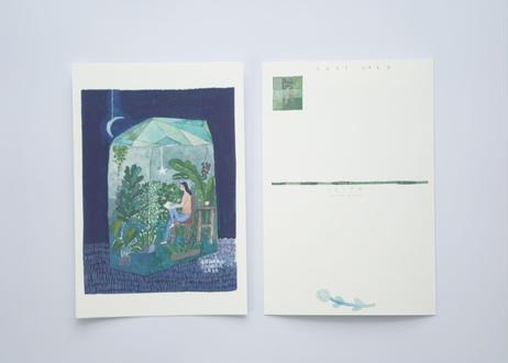 CHIHIRO SONODA ポストカード