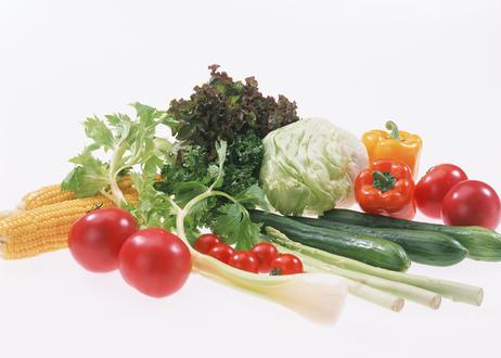 沖縄が育む 有機栽培野菜セット