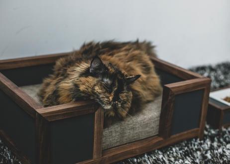 GOTHAM / pet bed [オーク×ネイビー]