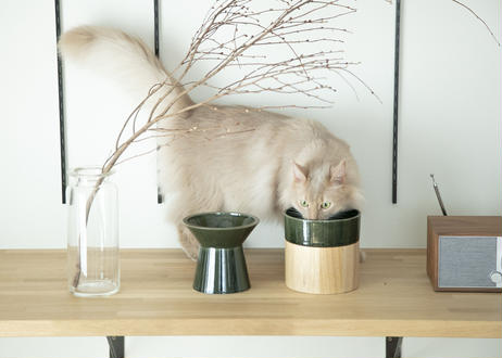 Food & Water Bowl Set [織部]