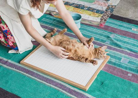 ARCTIC / cool tile mat [ウォールナット]