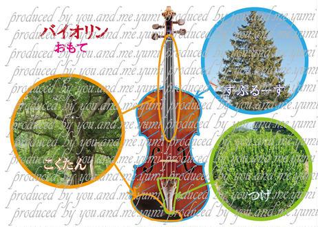 ~♪2枚セット:バイオリンの材料♪~
