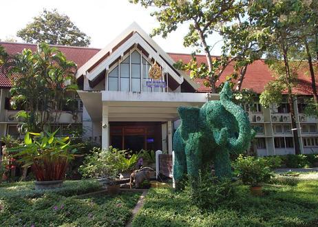 タイ (チェンマイ大学コーヒー農園) 100g