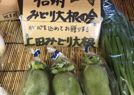 おうちで信州・上田の直売所やさいセット【送料無料】