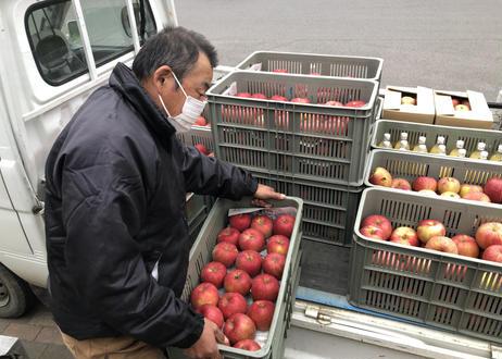 シャキシャキの信州りんご サンふじ10㎏ 28~40玉入【送料無料】