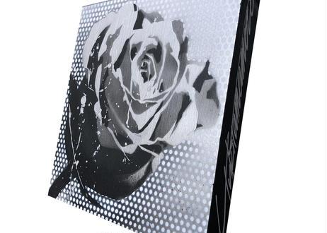 Paint Rose(Silver Dot)- L30